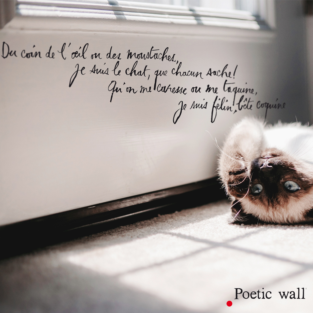 sticker-poeticwall-je-suis-le-chat